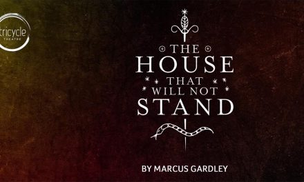 79% #OutOf100 – The House That Will Not Stand at Tricycle Theatre