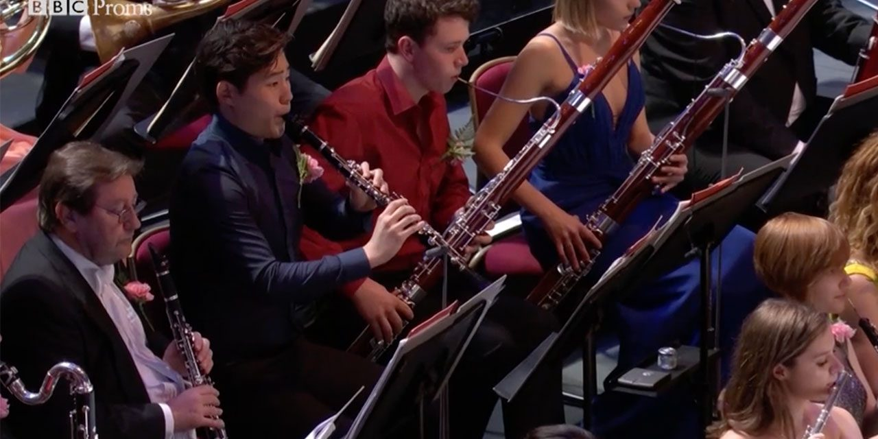 BBC Proms wants 30 Young Musicians aged 16 – 25. Deadline 10th May 2018