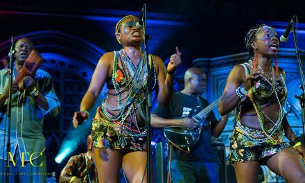 Adebiyi Adepegba Discusses The London African Music Festival He Co-Founded