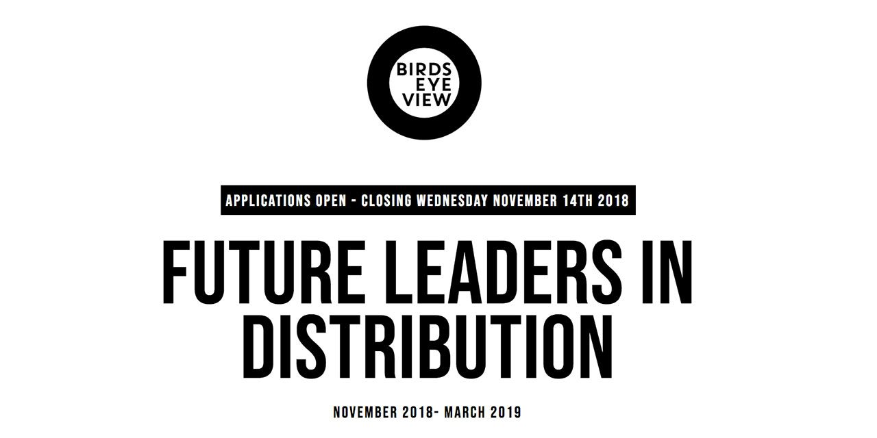 Are you the future of UK film distribution? Deadline for application Nov 14th 2018